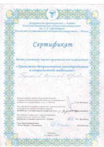 Сертификат Туманов В. 2008
