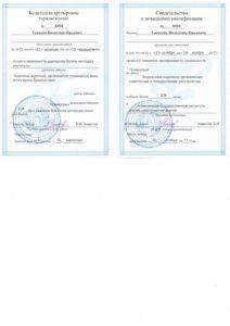 Свидетельство о повышении квалификации Туманов В. 2011